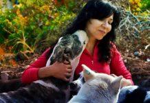 pet vet hayvan dostları dergisi nuran ergün röportaj