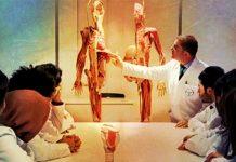 Sınav sabahında bir tıp öğrencisi