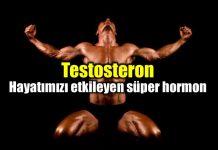 Testosteron: Hayatı etkileyen süper hormon
