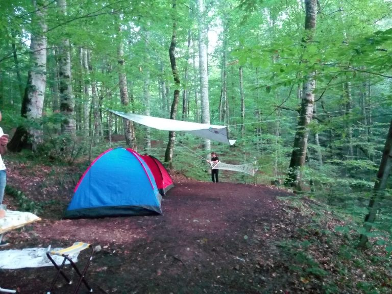 yedigöller kamp alanı