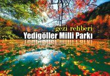 Yedigöller Milli Parkı: Bir gezginin günlüğü gezi rehberi bolu