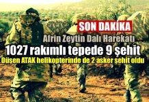 Afrin Zeytin Dalı Harekatı: Şehit sayısı 11'e yükseldi