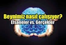 Beyin nasıl çalışır? Efsaneler ve gerçekler