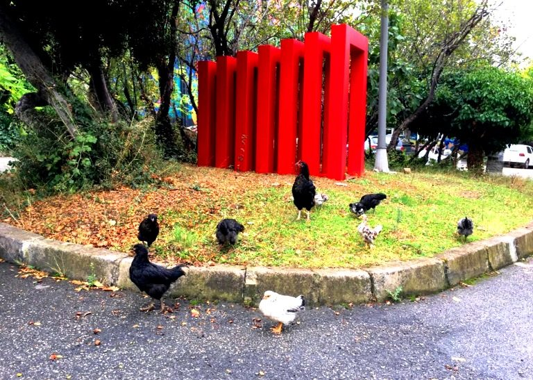 Ekolojik sanat ve organik heykel: Doç. Dr. Alaattin Kirazcı tavuklar