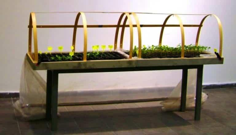 Ekolojik sanat ve organik heykel: Doç. Dr. Alaattin Kirazcı arıcılık
