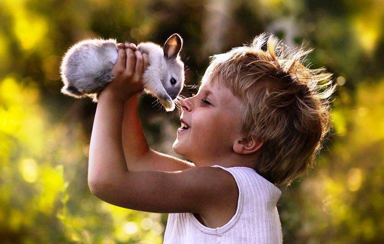 Mutlu çocuk yetiştirmenin sırları neler? Anne baba ne yapmalı? tavşan hayvanlar doğa