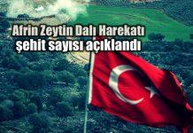 Afrin Zeytin Dalı Harekatı şehit sayısı: Nurettin Canikli açıkladı