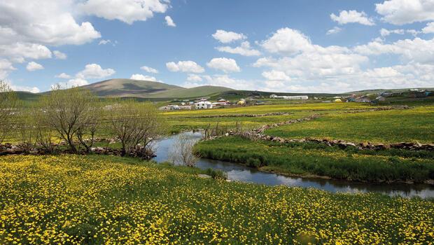 Boğatepe Köyü