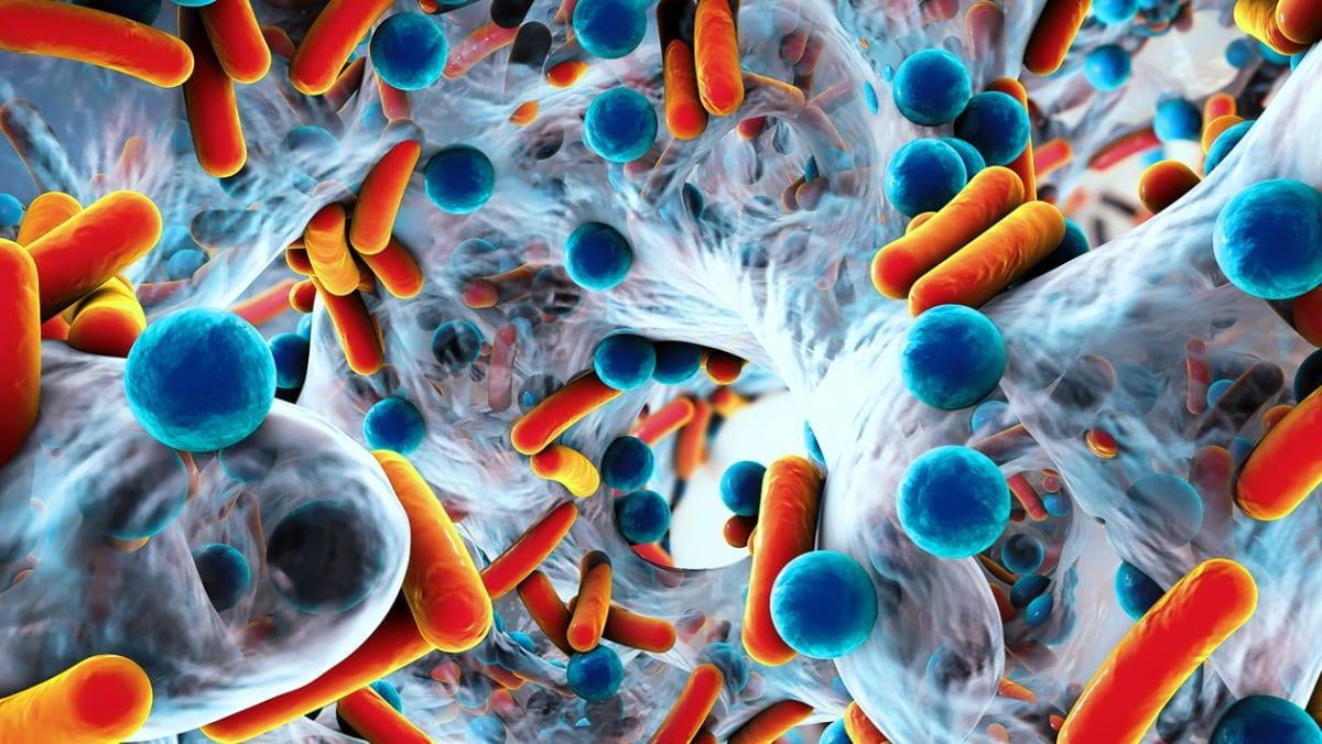 Sağlık dostu bakteriler neler? Probiyotik neden bu kadar önemli?