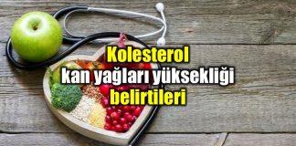 Kolesterol ve kan yağları yüksekliği nedir? Belirtileri neler?