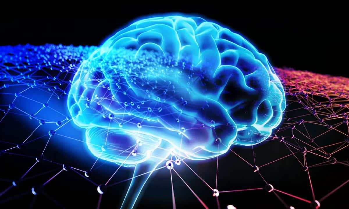 Sağlıklı bir beyin için 8 altın kural: Beyin dostu uygulamalar