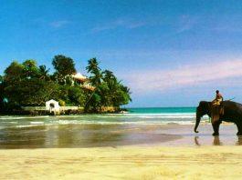 uzakdoğu tatilleri tayland tatili