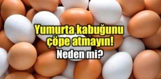 Yumurta kabuğu ve zarı faydaları neler?