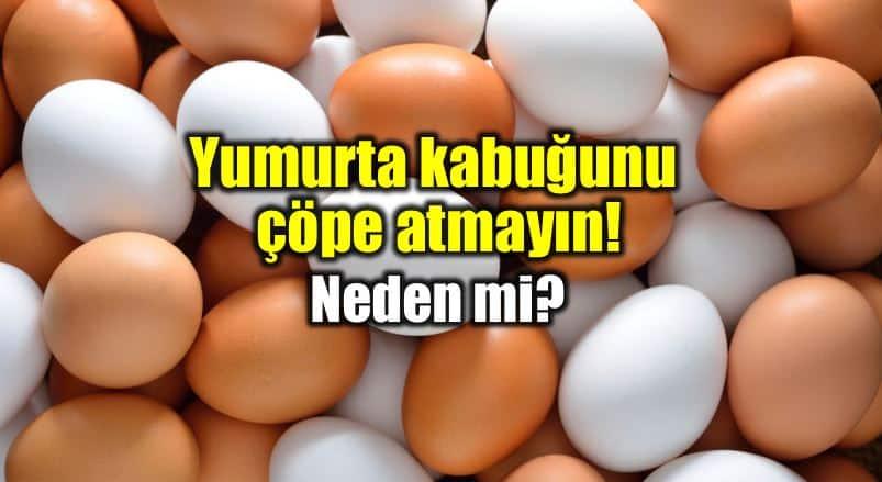 Yumurta kabuğu tozu ve zarı faydaları neler?
