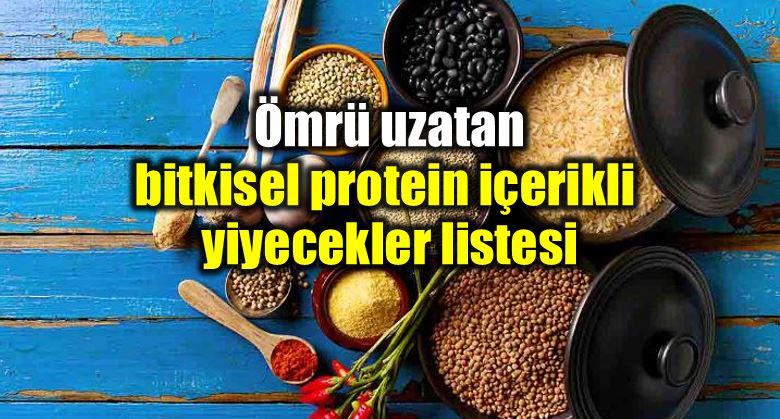 Bitkisel protein içeren yiyecekler listesi