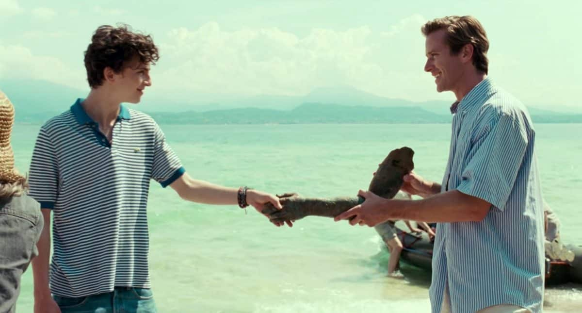 Timothée Chalamet ve Armie Hammer - Beni adınla çağır (Call me by your name)t