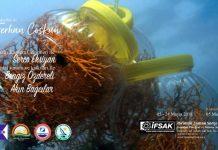Mercan Aşkına: Ferhan coşkun yeni fotoğraf sergisi