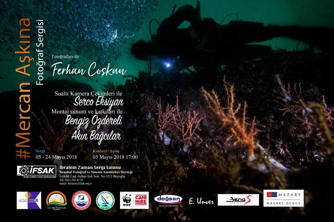 Mercan Aşkına: Ferhan Coşkun yeni fotoğraf sergisi ifsak sivriada