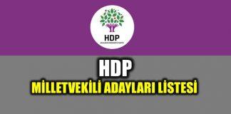 24 Haziran HDP milletvekili adayları tam liste
