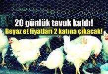 beyaz et krizi tavuk fiyatları