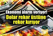 Ekonomi alarm veriyor: Dolar/TL 4,60 seviyesini görebilir!