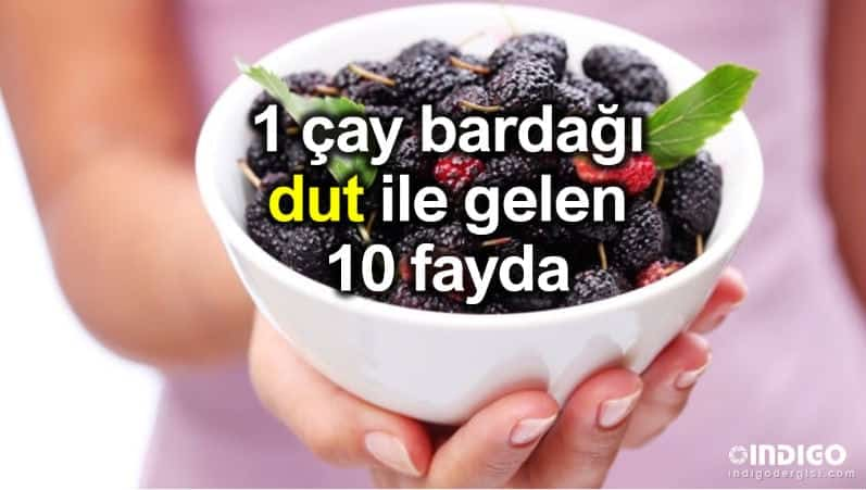 1 çay bardağı dut ile gelen 10 fayda!