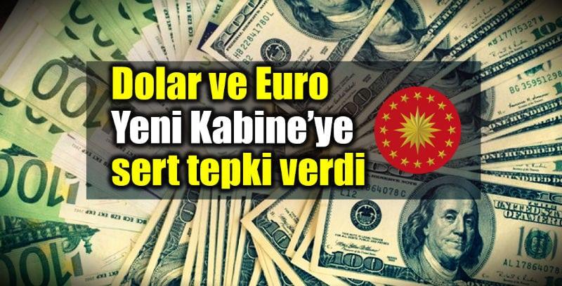 Dolar tl ve Euro tl Yeni Kabine sert tepki verdi ne kadar oldu