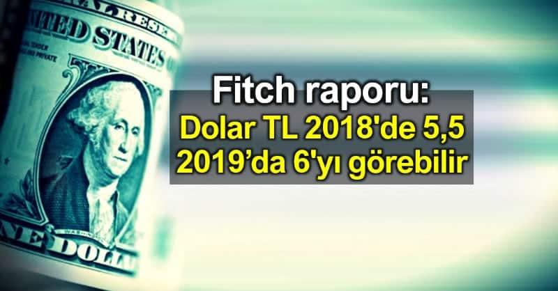 Fitch raporu: Dolar TL 2018 5,5; 2019 6 lira görebilir
