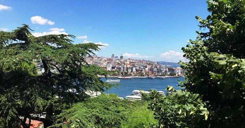 istanbul üniversitesi botanik bahçe atatürk alfred hilbron
