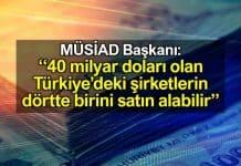 40 milyar doları olan Türkiye'deki şirketlerin dörtte birini satın alabilir