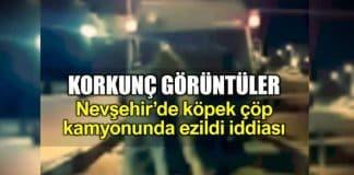 Nevşehir Acıgöl köpek çöp kamyonunda ezildi iddiası