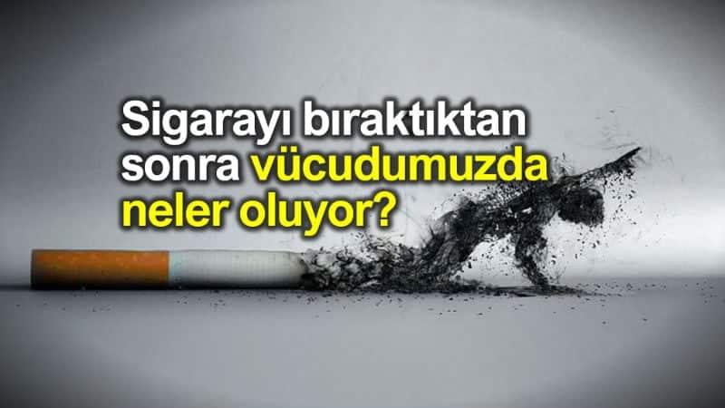 Sigarayı bıraktıktan sonra ne oluyor? Sigara bağımlılığı nasıl başlar?