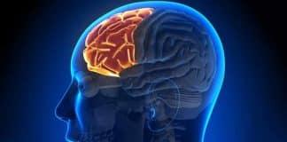 Sıcak havalar epilepsiyi tetikliyor; özellikle alkol tüketimine dikkat!