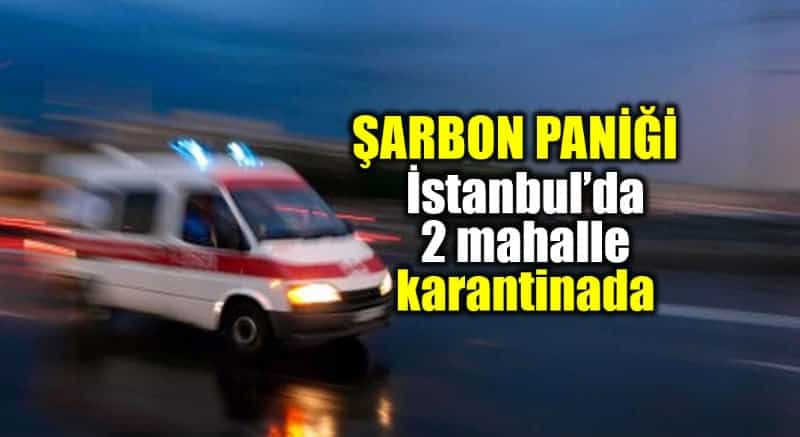 İstanbul şarbon paniği: silivri İki mahalle karantinaya alındı