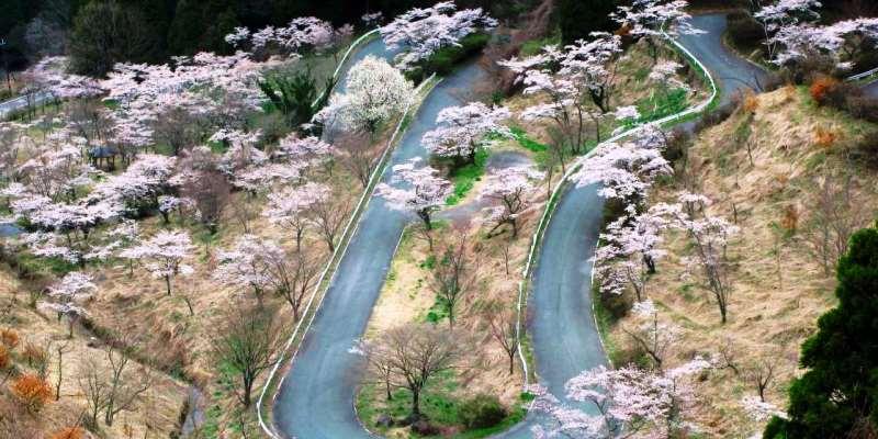 Touge Yolları, Japonya