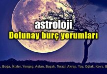 Astroloji: Boğa burcunda Dolunay burç yorumları