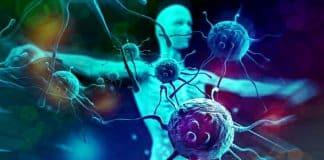Bağışıklık sistemini en çok güçlendiren besinler listesi