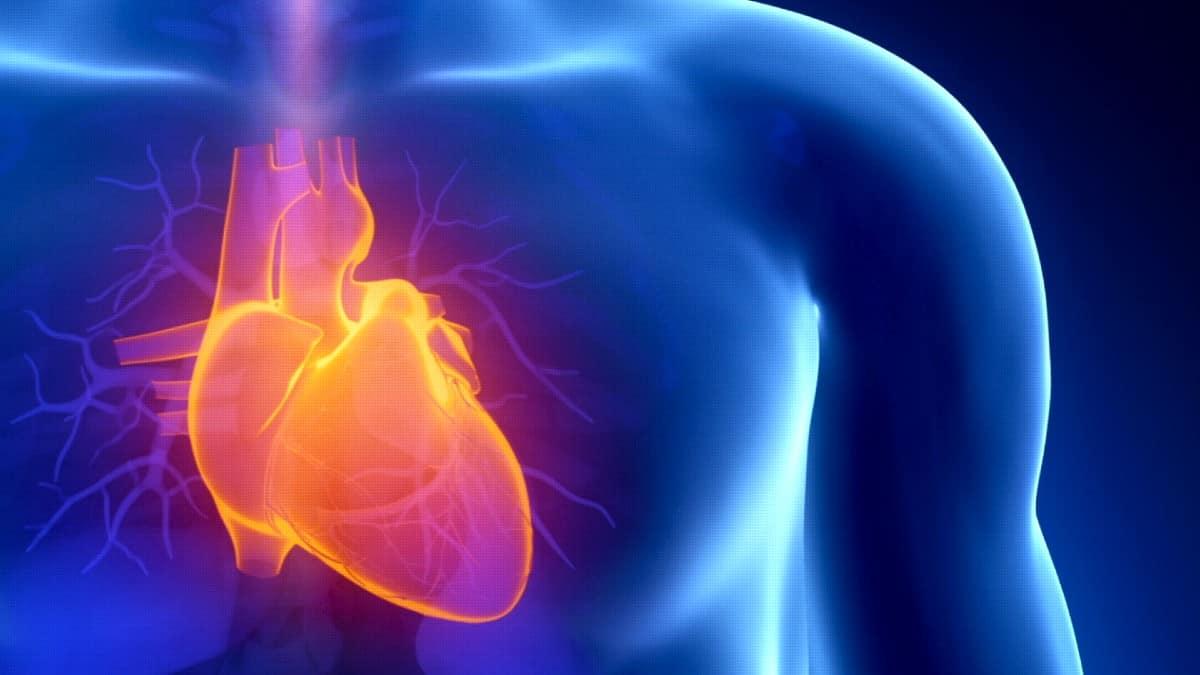 kalp kapak hastalığı
