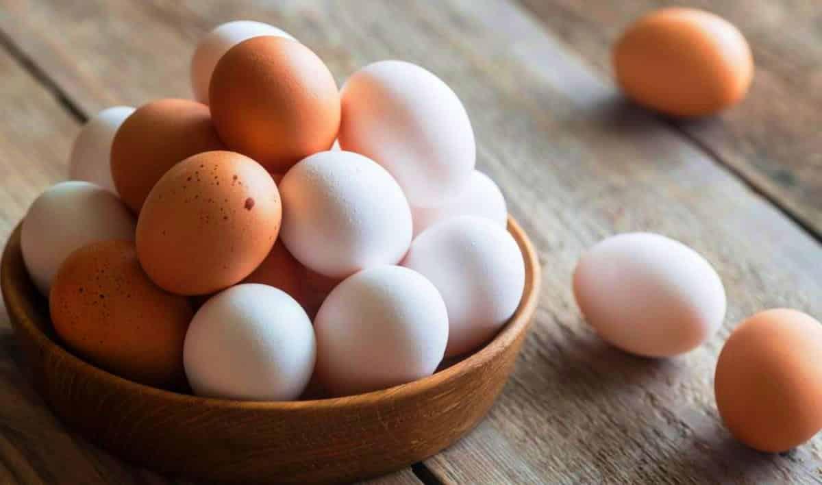 Yumurta yaraların iyileşmesine bile yardımcı oluyor!