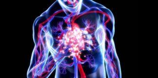 Akciğer embolisi nedir? Bacaktan gelen ölümcül tehlike!