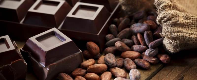 bitter çikolata probiyotik