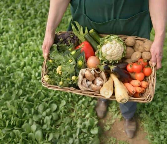 Her organik ürün doğan, her doğal ürün organik midir?