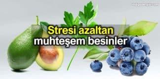 Stres azaltan besinler listesi