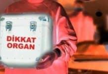 Vefaten organ bağışı ve beyin ölümü nedir?