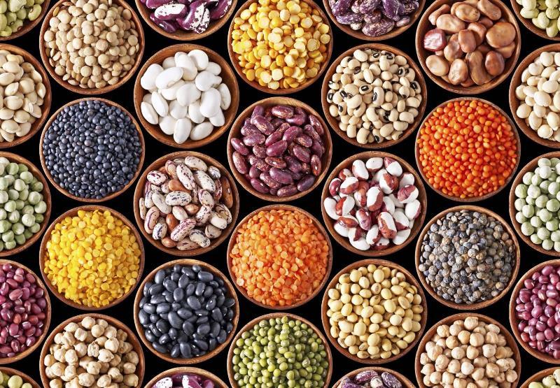 veganlar için alternatif protein kaynakları kurubaklagiller