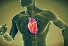 Kalp sağlığı hakkında pek bilinmeyen 7 ilginç gerçek