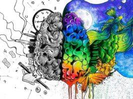 Sağ beyin temelli eğitim sisteminin faydaları neler?