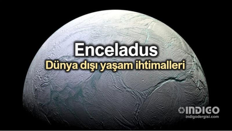Satürn uydusu Enceladus: Dünya dışı yaşam ihtimalleri