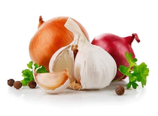 soğan sarımsak prebiyotikler