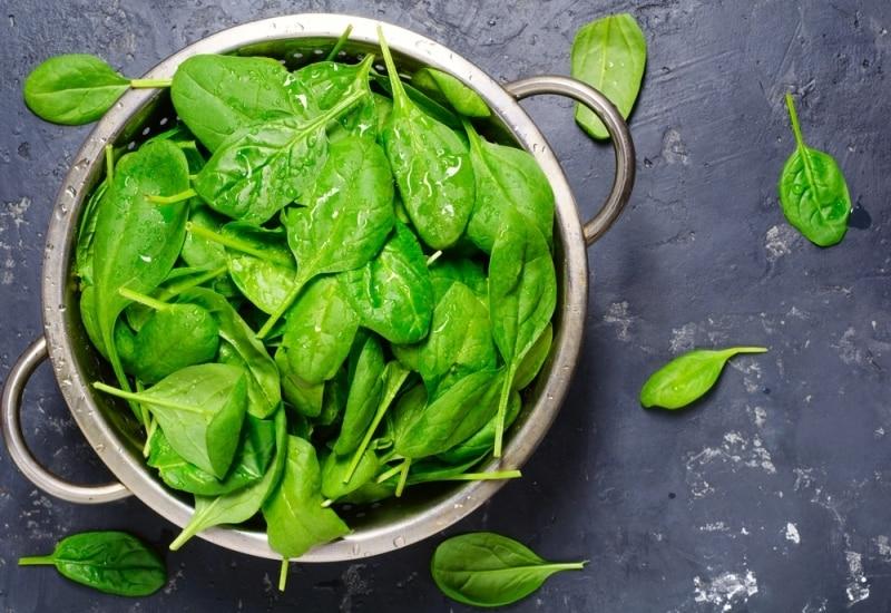 Yeşil yapraklı sebzeler / Kan sulandırıcı ilaçlar